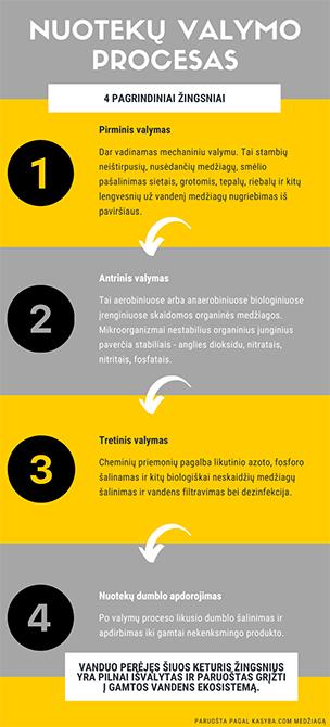 infografikas-11.jpg